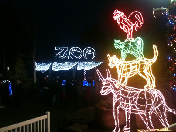 day 323 (zoo lights)